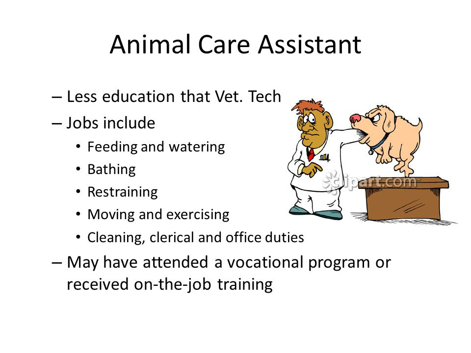 Introduction to Veterinary Medicine  ppt download