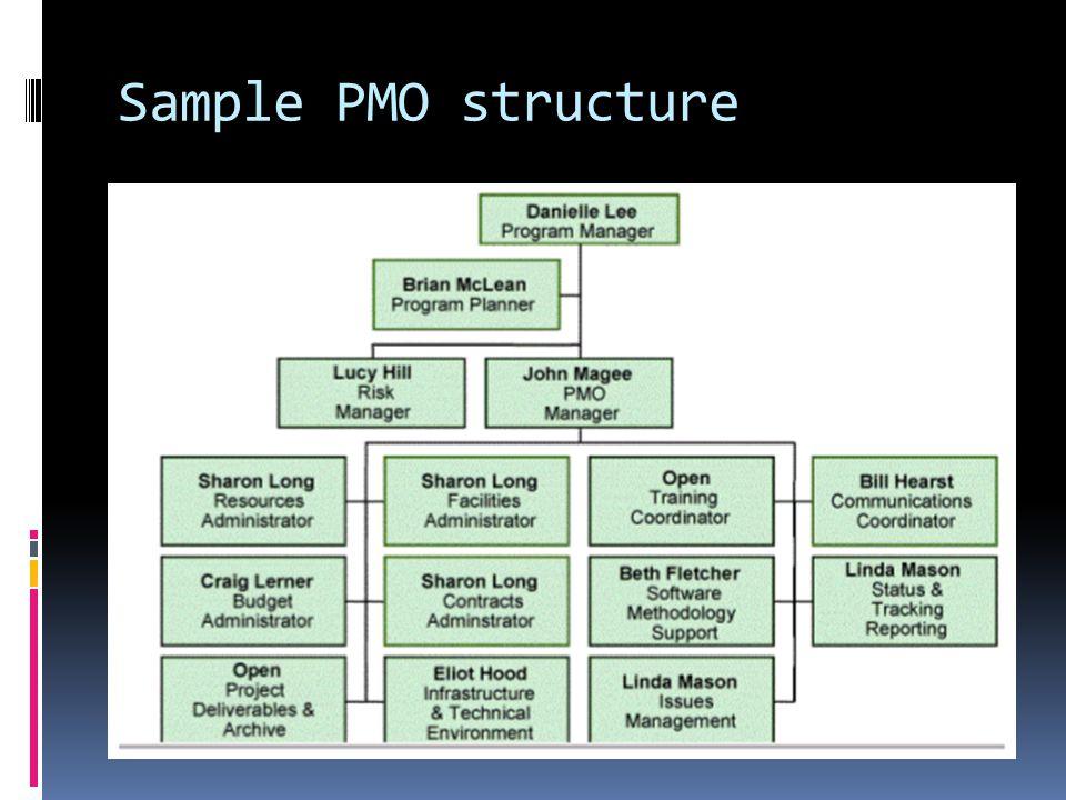 Program governance structure setup  Management  ppt video online download