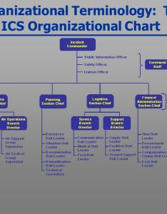 organizational terminology the ics chart also basic incident command system for federal workers  ppt rh slideplayer