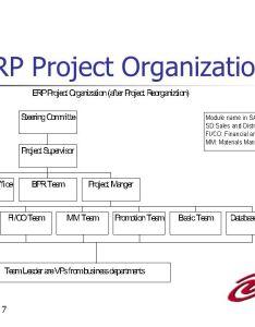 Erp project organization also group vi stephen azar paulette turner sarah whitehead paiching yen rh slideplayer