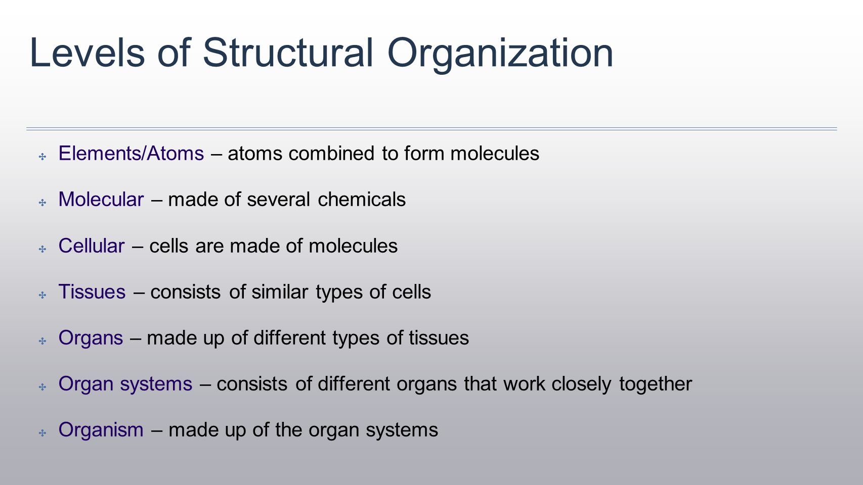 Organization Of The Body Worksheet Answers