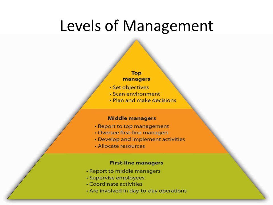 Levels Of Management | brandforesight co