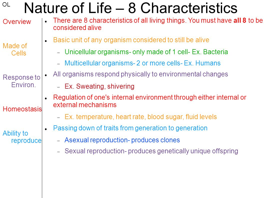 Nature Of Life 8 Characteristics