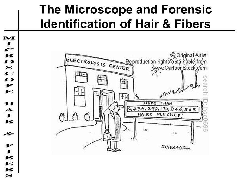 The Microscope and Forensic Identification of Hair