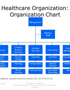 healthcare organization chart also the culture of ppt download rh slideplayer