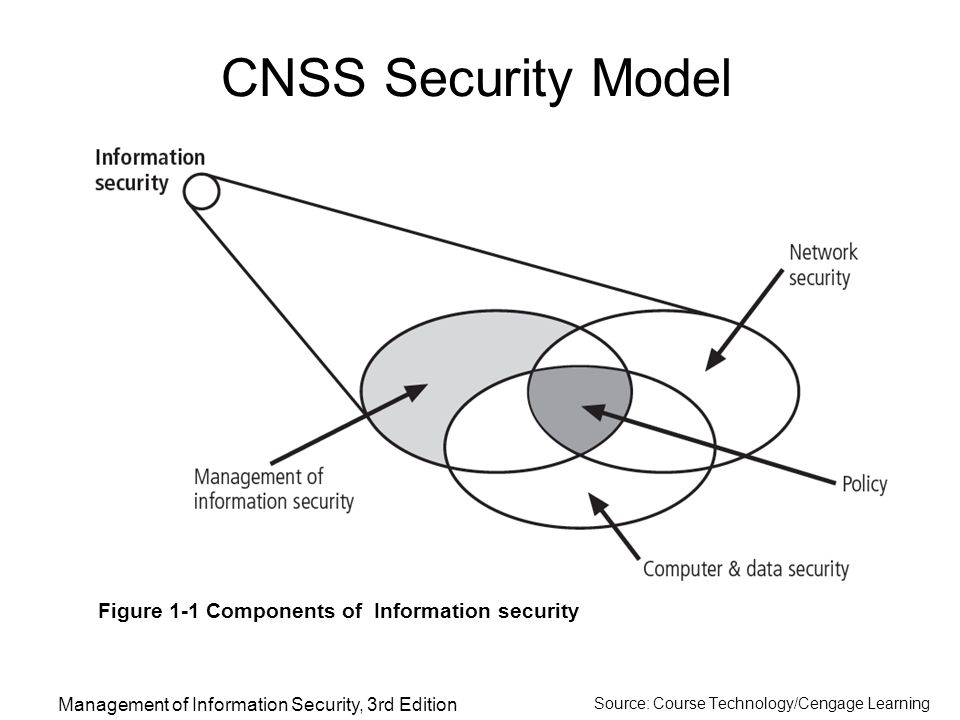 Introduction to the Management of Information Security