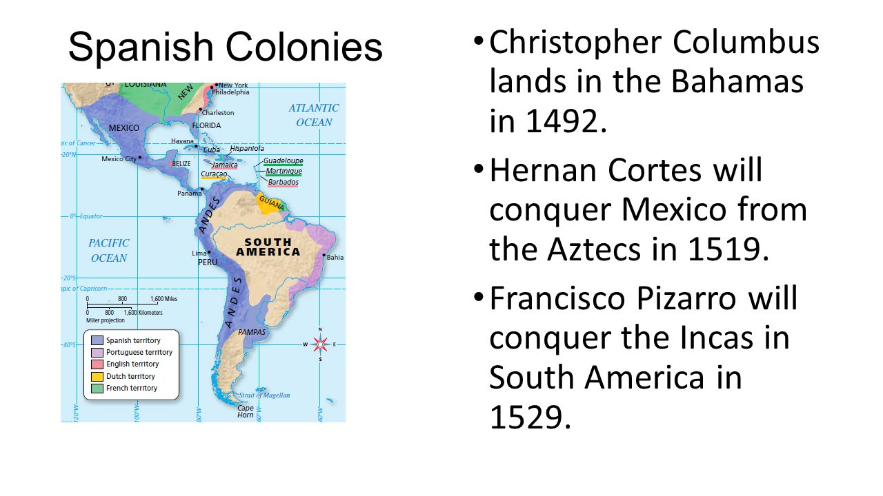 Image result for cortes colonies