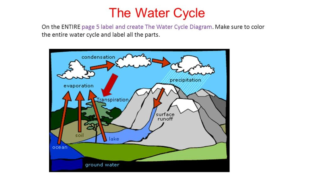 medium resolution of the water cycle on the entire page 5 label and create the water cycle diagram