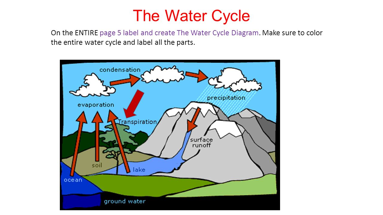 hight resolution of the water cycle on the entire page 5 label and create the water cycle diagram