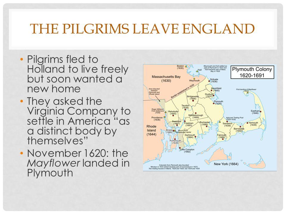 pilgrims vs puritans venn diagram 2005 honda accord radio wiring new england colonies ppt download the leave
