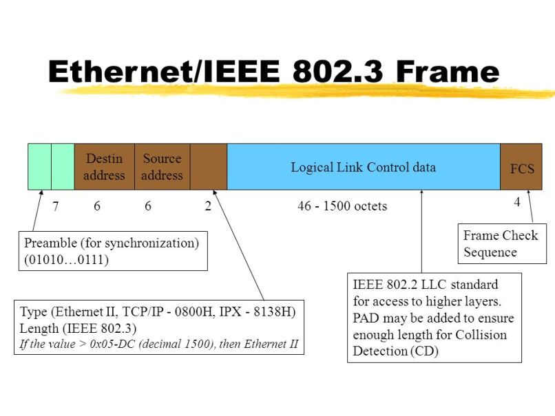 Ieee 802 2 Llc Frame Format Data Link Layer In The Internet ...