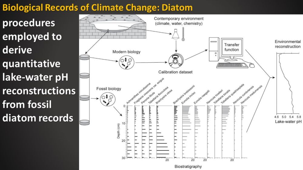 medium resolution of biological records of climate change diatom