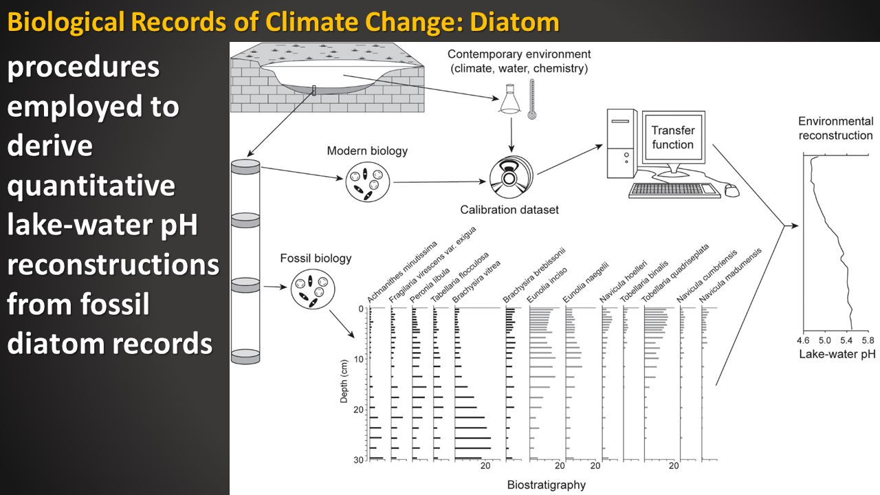 hight resolution of biological records of climate change diatom