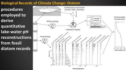 small resolution of biological records of climate change diatom