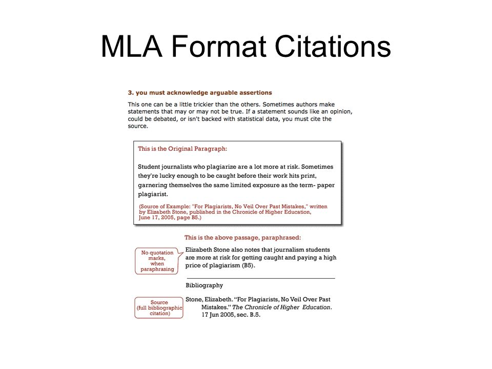 Formal Lab Report SEED GERMINATION LAB Ppt Video Online