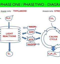 phase one phase two diagram [ 1280 x 720 Pixel ]