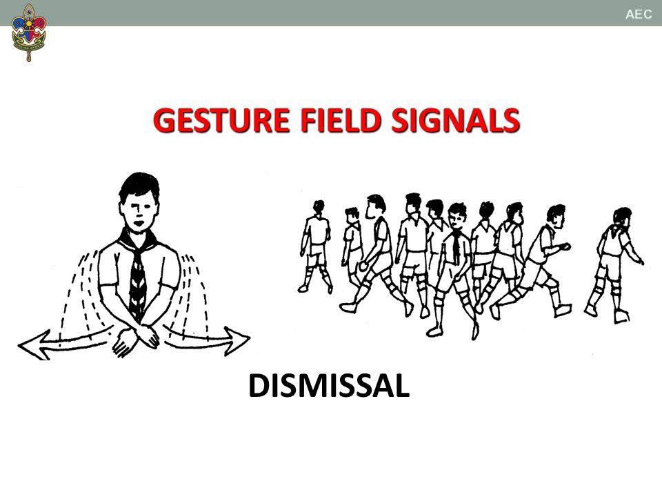 Whistle Signals Scout t Cub scouts