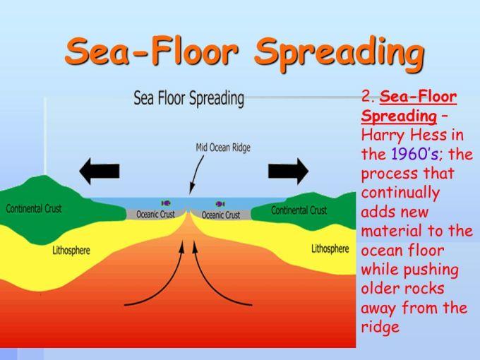 Label The Ocean Floor Diagram Wikizie