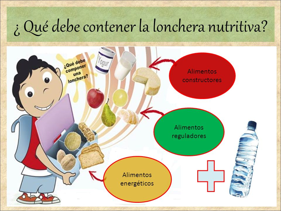 Importancia de la Lonchera Nutritiva  ppt video online