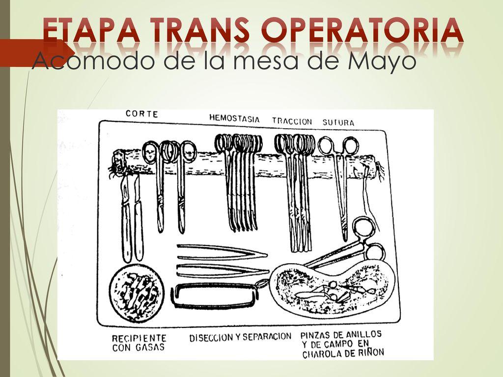 ETAPA TRANS OPERATORIA  ppt descargar
