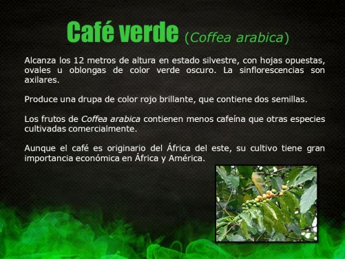 Image result for SEMILLA DE CAFE VERDE BENEFICIOS