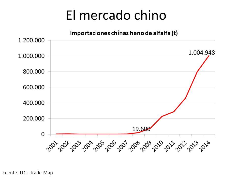 Exportaciones argentinas de alfalfa: presente y futuro