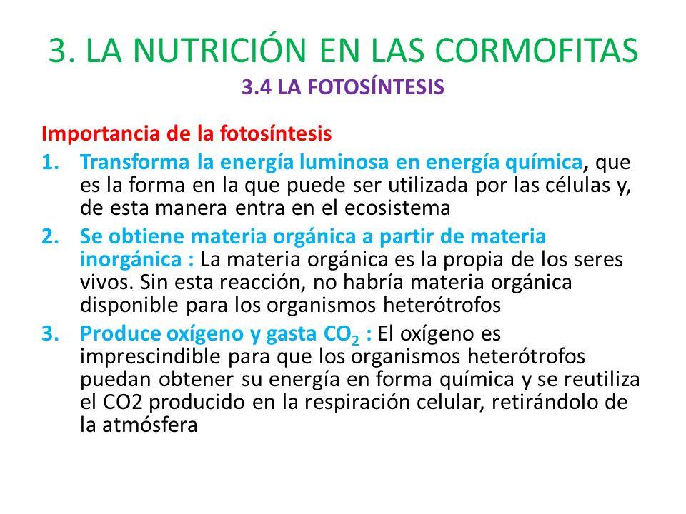 LA CLASIFICACIN Y LA NUTRICIN DE LAS PLANTAS  ppt descargar