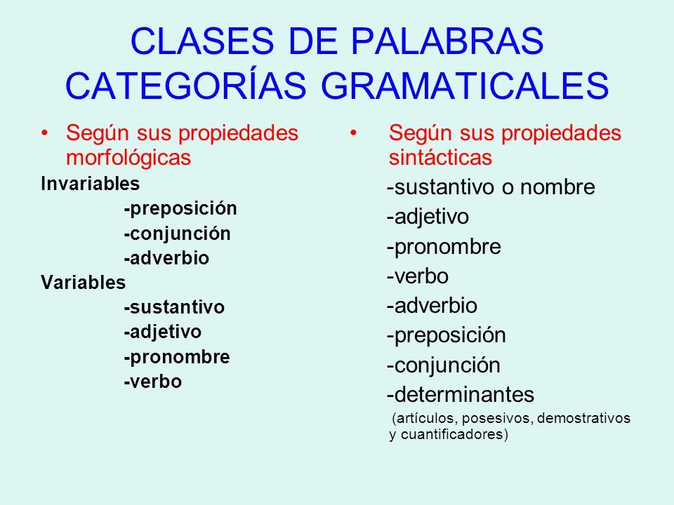 Resultado de imagen de morfología clases de palabras