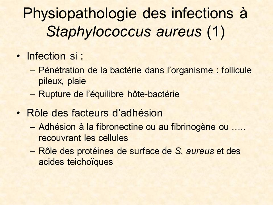 Staphylocoques Facult De Pharmacie Ppt Video Online