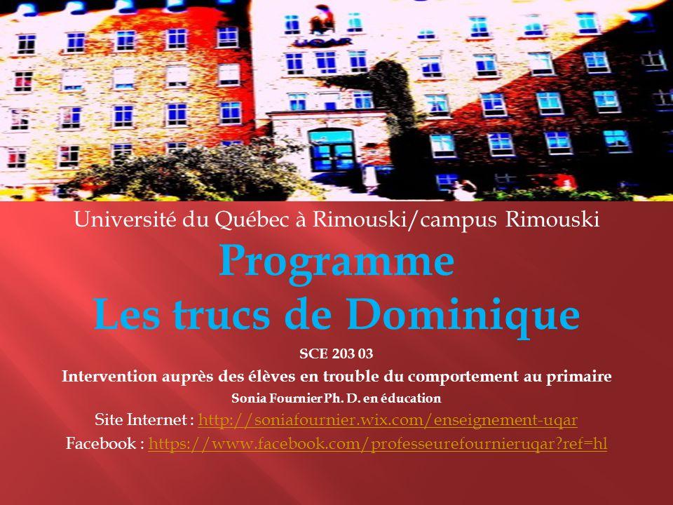 Programme Les Trucs De Dominique  Ppt Video Online