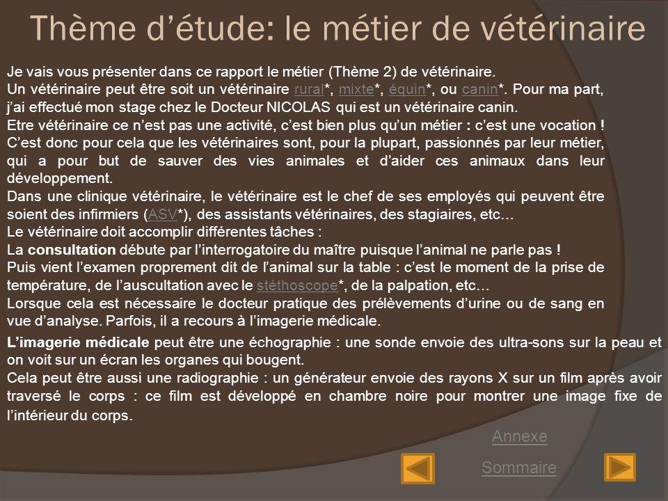 Rapport de Stage Cabinet du Docteur NICOLAS vtrinaire  ppt video online tlcharger