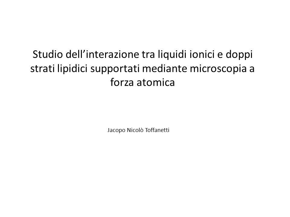 Jacopo Nicol Toffanetti  ppt scaricare