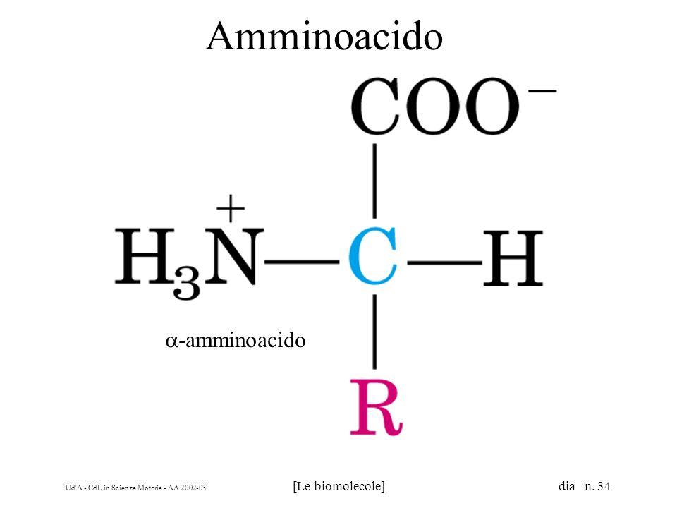 Monosaccaridi Aldosi Chetosi. Glucidi (carboidrati o