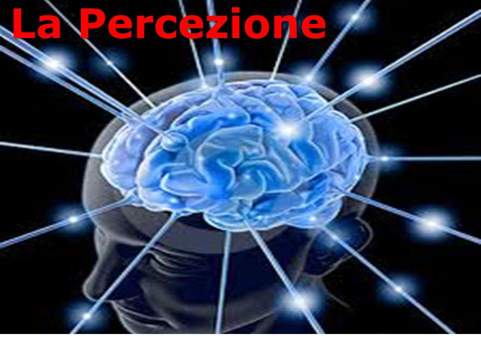 Percezione Attenzione Memoria  ppt scaricare