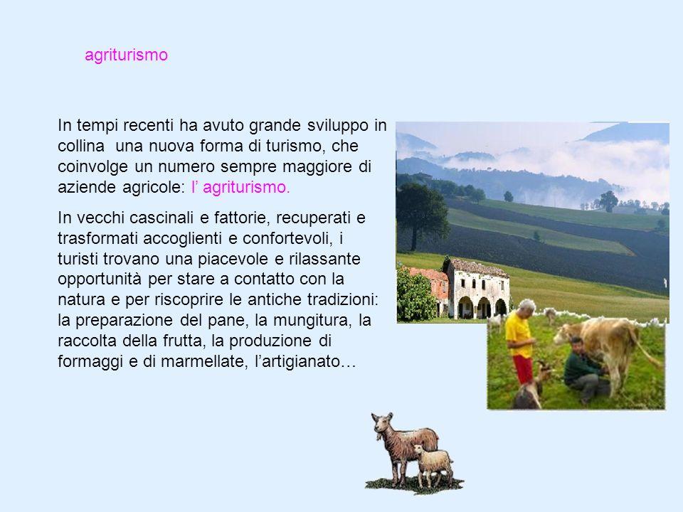 La collina Classe 3A Scuola Primaria AVGentile  ppt video online scaricare