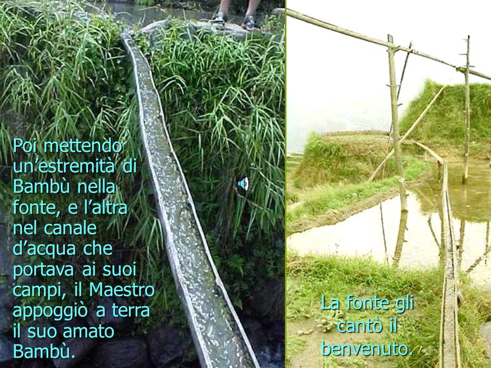 Risultati immagini per canali d'acqua con bambu