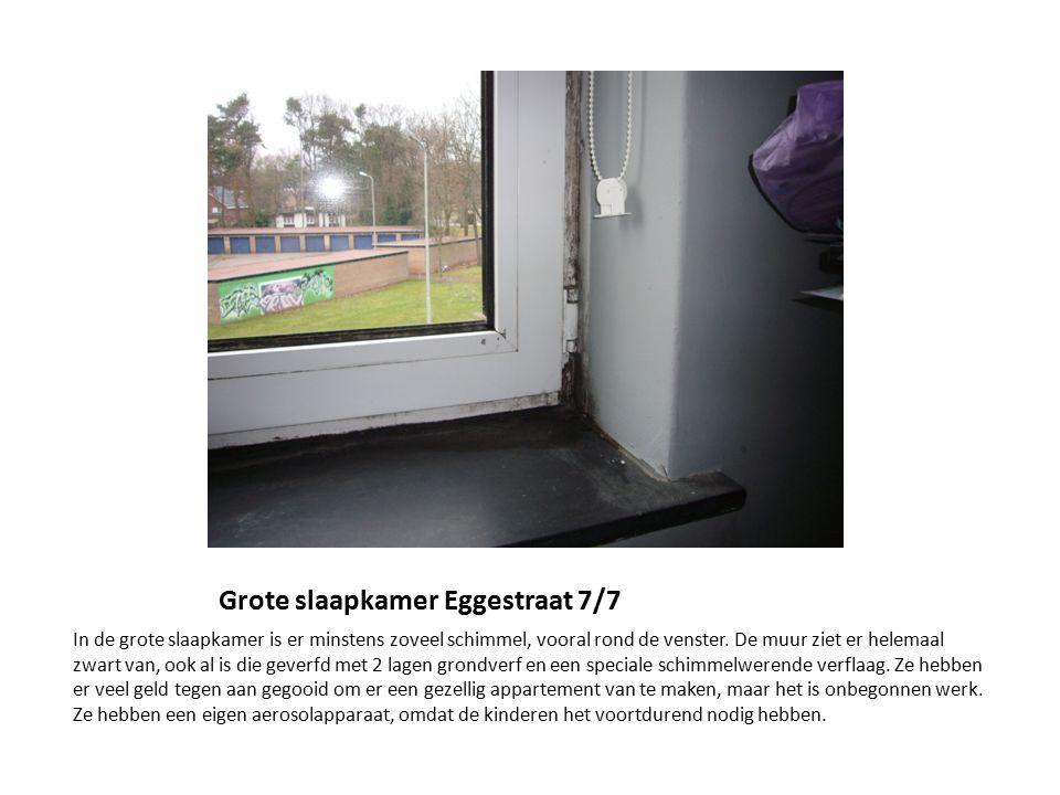 Badkamer Eggestraat 77 Het rolgordijn in de badkamer ziet