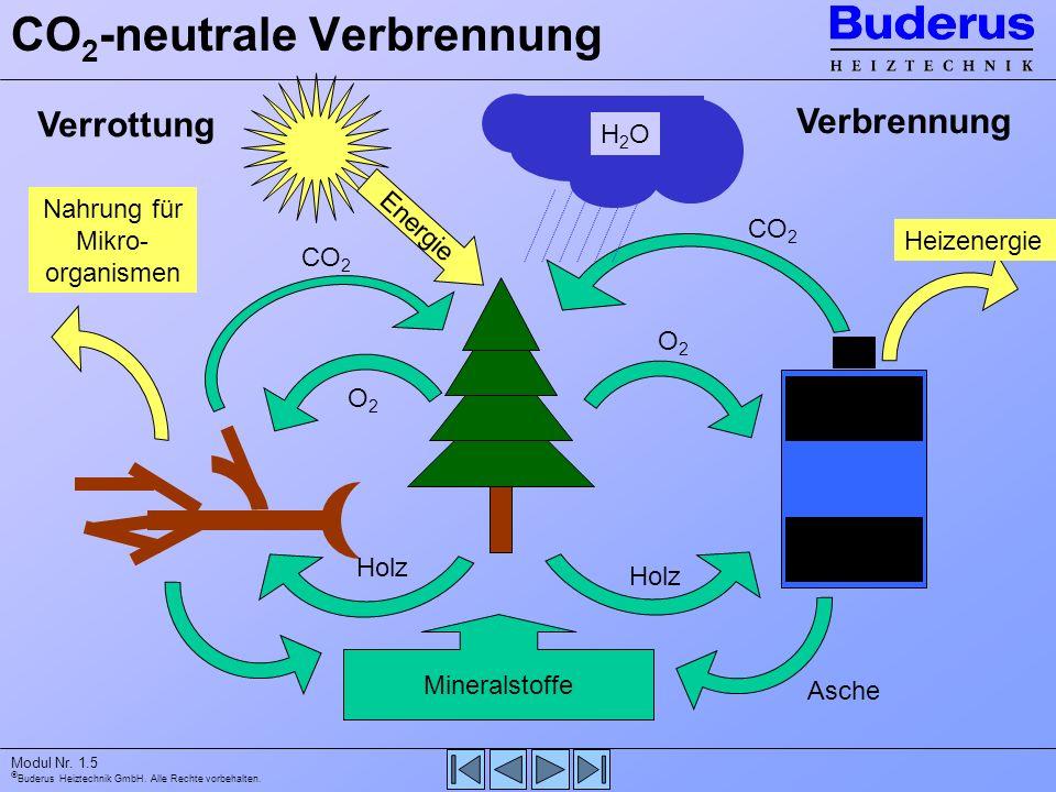 Schulung Holzfeuerung  ppt video online herunterladen