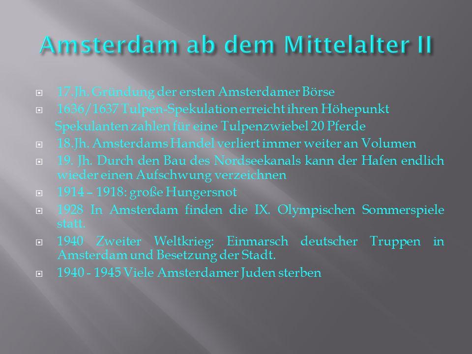 AMSTERDAM  ppt video online herunterladen