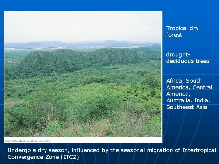 Contribution to the flora of the gir forest. Biol 4120 Principles Of Ecology Lecture 22 Biogeographical