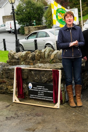 Amanda Pedlow, Offaly Tourism Officer pays tribute to Paddy Lowry at the unveiling of the plaque in Kinnitty