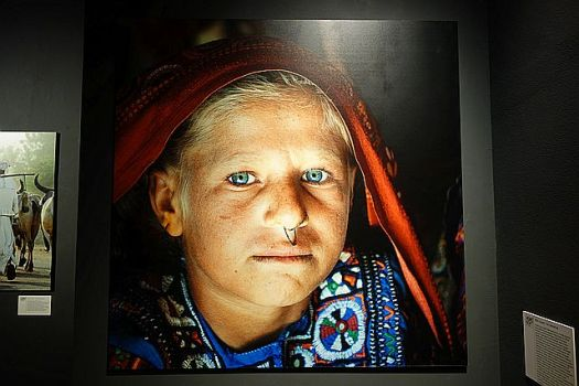 The Aryan colouring of the Gujarati of India