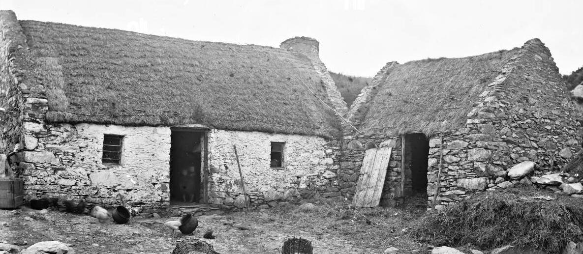 Irish Harvesters