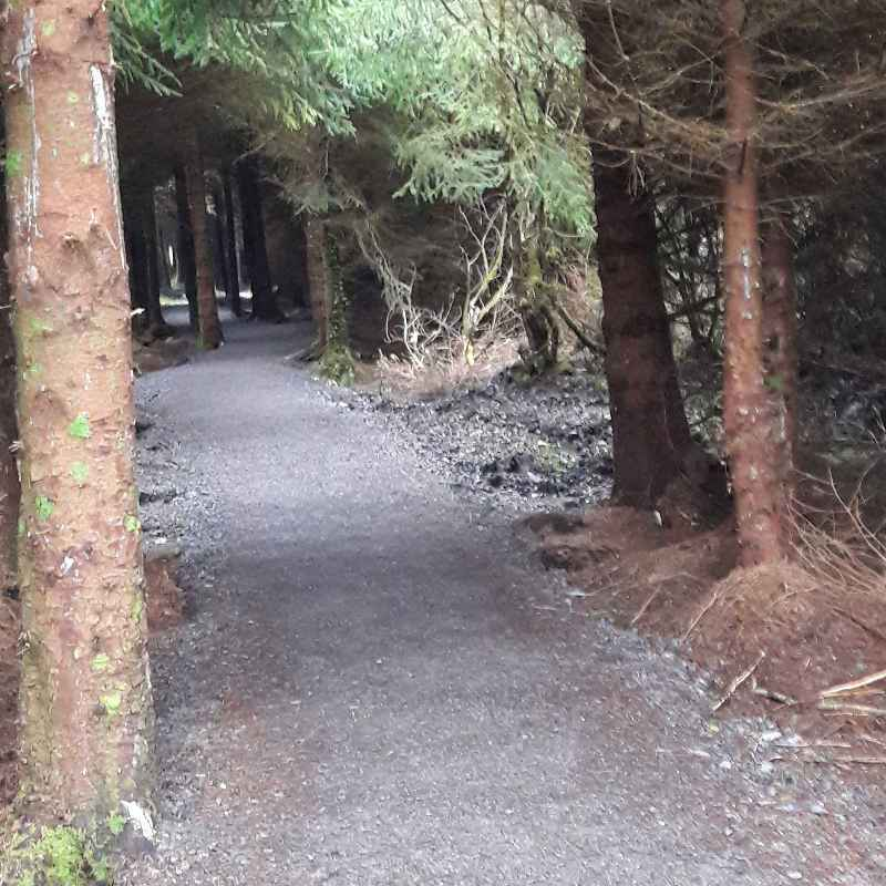 Tubbercurry Trail