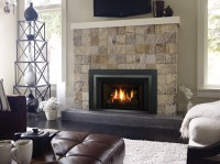 LRI4E & LRI6E LIBERTY RADIANT GAS INSERTS : Fireplaces ...