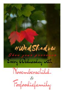 Conquering Self-WedShadow