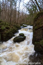 Moss-covered boulders in the middle of the river