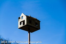 The house on a stick (1)