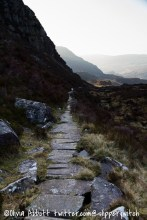 Heading back down the slippery path - take two!