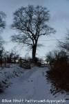 snowy day-16